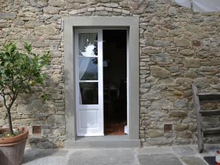 Villa Il Borgo-Cortona rental ideal for big groups