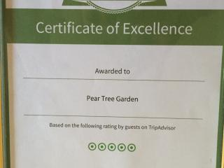 Our certificate of excellence