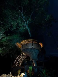 Tree House at Night
