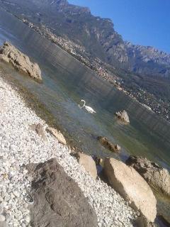 free beach near the lake