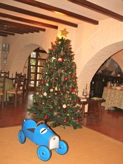 L'albero di natale in taverna.