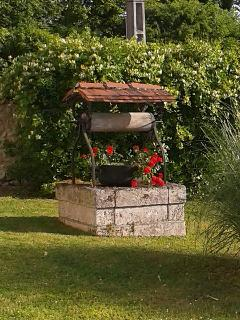 Our own little wishing well!