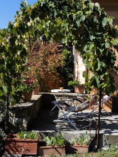 Le Scuderie: patio