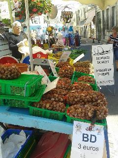 Local delicacies at the market!
