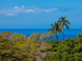 Wailea Ekolu #201 2Bd/2Ba Ocean View Condo Near Beach, A/C, Wifi, Sleeps 6
