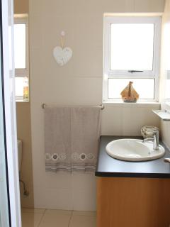 Main bedroom en-suite bathroom with shower and toilet