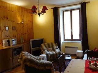 Salon, meubles anciens et peaux