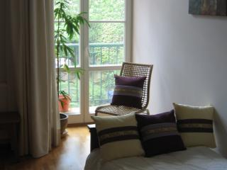 Large apartment in the center of Krakow