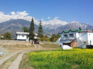 Dharamsala Paradise