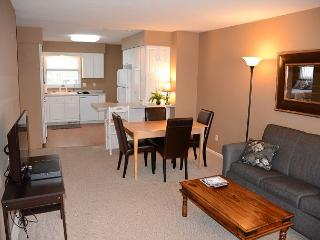 Premier Location! Near Mayo, St. Mary's and Apache Mall! Free WiFi.. 5 Stars!, Rochester