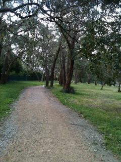 Walking path in Jubilee park