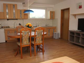 Economy App. with 2 bedrooms in Bohinj (Apartments Markez)