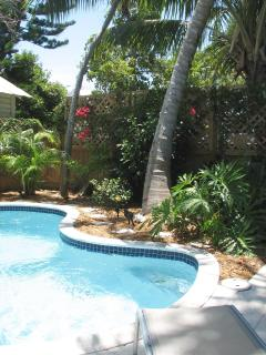 Private fenced back yard with pool