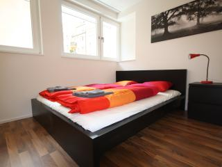 ZH Badenerstrasse VIII - HITrental Apartment, Prichovice
