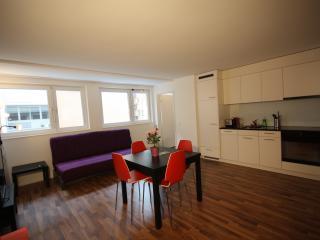 Badenerstrasse IV - HITrental Apartment Zurich, Zurigo