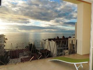 V177 Beautiful 1BR Brand New Condo in RomanticZone, Puerto Vallarta