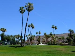 Palm Springs Indian Canyons Golf Retreat Sleeps 6