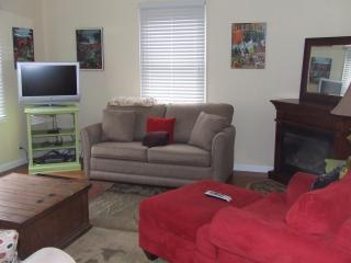 Living Room with Pull-out sofa
