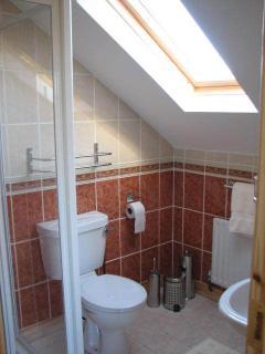 Upstairs en suite, roomy shower, one for each bedroom.                                        DWR