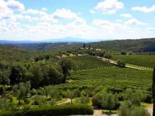 Cozy house with stunning view of Chianti hills., San Gusme