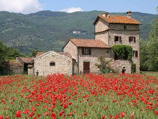 Charming Cortona villa with private pool (Dardano)