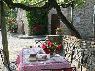Dine outdoors beneath a vine canopy