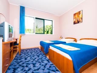 Apartments Dubelj - Twin Room - 1