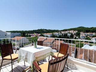 Apartment Vican - Duplex Two-Bedroom Apartment with Balcony