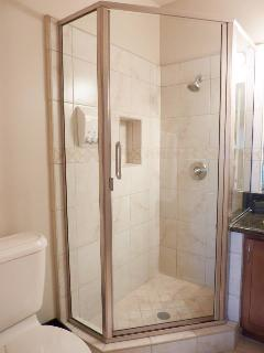 Shower in Master Bathroom 1
