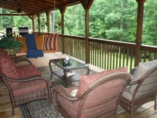 Bearadise Lodge - Blue Ridge GA