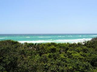 Amazing Gulf Views