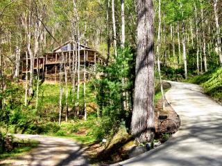 Asheville Chalet – Waterfall right off deck, hot tub, 15 Min. to downtown Ashevi