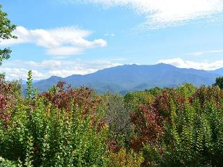 Private estate with spectacular views, Gatlinburg