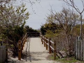 Beach Path across the Street