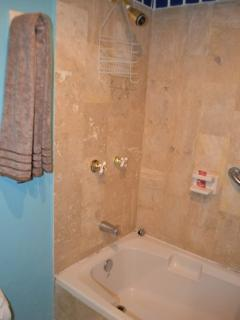Bathroom, shower and bathtub