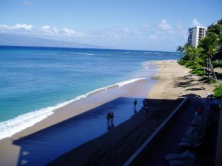 Best Spot on Maui to watch the Humback Whales, Lahaina