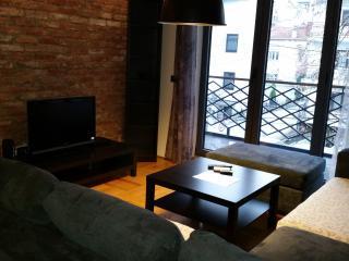 One bedroom Apartment in Centar Of Skopje