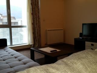 Central one bedroom Apartment-Leninova street