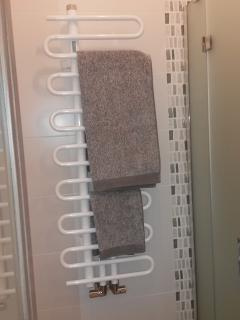 Details of the secondary bathroom: heated towel rail.
