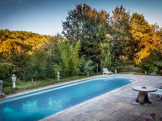 Historic medieval Farmhouse  with large 40 feet swimming pool in Pech la Fiere