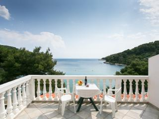 Apartments Franka Saplunara-One-Bedroom Apartment with Terrace and Sea View No1