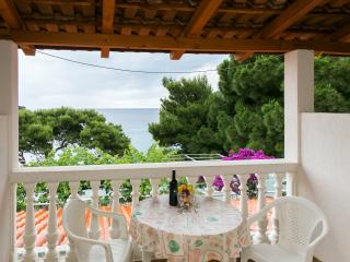 Apartments Franka Saplunara-Twin Room with Terrace and Sea view  No1