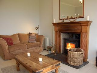 Front sitting room with wood-burner