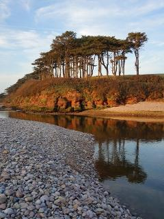 The river Otter is just a few minutes walk from Pebbles the Apartment