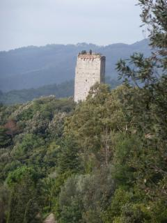 Nearby ancient lookout tower - an easy walk away
