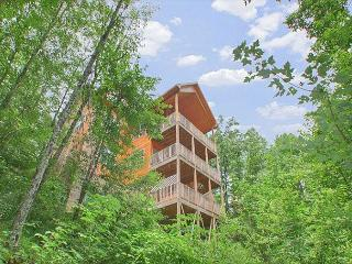 Spectacular Views, 3 Decks, Deck Swing, Hot Tub, Sevierville