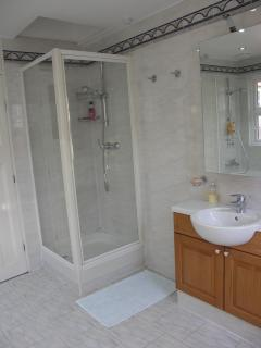 Bathroom showing vanity and shower