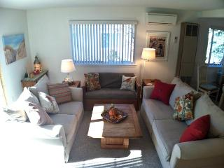 Ocean Edge Lovely Patio Style with A/C & Pool (fees apply) - SU0053, Brewster