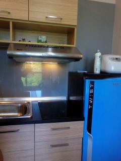 Brand new kitchen fan!