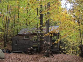 Thoreau's Eco-Cabin in Maine Woods, Denmark